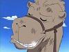 Ero-Camel